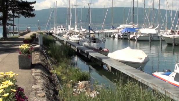 Hafen Cudrefin - Gästeplätze