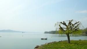 Das Seeufer des Neuenburgersees bei Concise