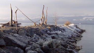 Frost am Neuenburgersee
