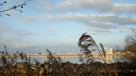 Hafen Cheyres im Winter
