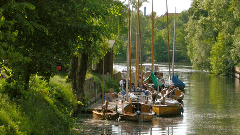 Der romantisch gelegene Steg vom Holzboot-Charter in Brandenburg