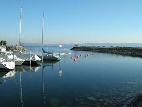 Neuenburg Hafen 2